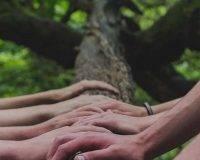 Crowdfunding : les minibons
